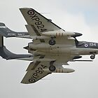De-Havilland Sea Vixen FAW2 by Andy Jordan