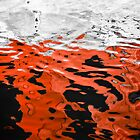 Red and Black Water by Barbara Ingersoll