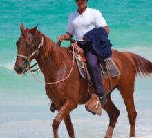 Horse rider on a Tropical Beach in Florida Sticker