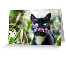 Black cat licking her lips Greeting Card