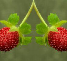 Summer Twins by JHRphotoART