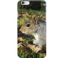 Squirrel on Point iPhone Case/Skin