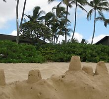 Sandcastles, a la Hawaii by jtalia