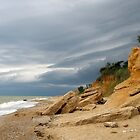 Storm is coming by Minichka