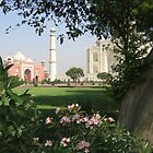 A Different View of the Taj Mahal by Patricia127
