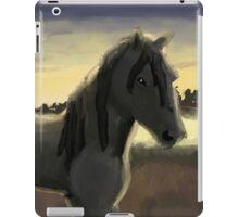 Morning Stallion iPad Case/Skin