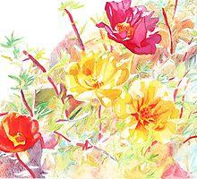 Moss Roses by Amanda Lee