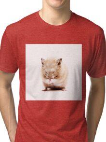 Sleepy Hamster Tri-blend T-Shirt