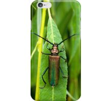 Musk Beetle on Willow Leaf iPhone Case/Skin