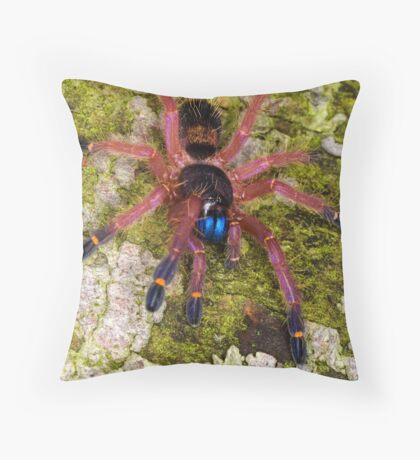 Blue Fang Tarantula Spiderling Throw Pillow