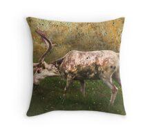 A Reindeer Named Bimbo Throw Pillow