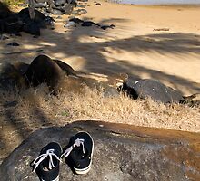 Lost Shoes - Kelly's Beach - Australia by Anthony Wilson