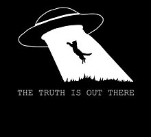 The truth is out there by spectralstories