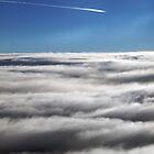 Fly homeward, angel by Eric Seale