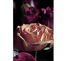 Grungy Rose Photographic Print
