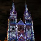 St Marys Cathedral, Sydney 2010 by Malcolm Katon