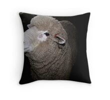 Corriedale Sheep in the Shearing Shed Throw Pillow