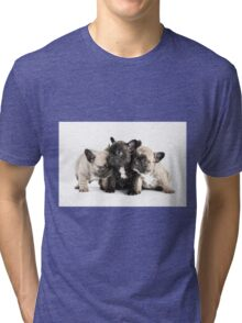 Frenchie Pals Tri-blend T-Shirt