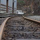 Tracks by Lanii  Douglas