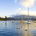 Geilston Bay - Hobart, Tas by Anthony Davey