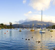 Geilston Bay - Hobart, Tas by Anthony Davey