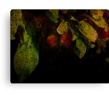 Amidst it all Canvas Print