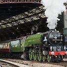 The Torbay Express by Steve  Liptrot