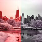 Chicago by Paula Bielnicka