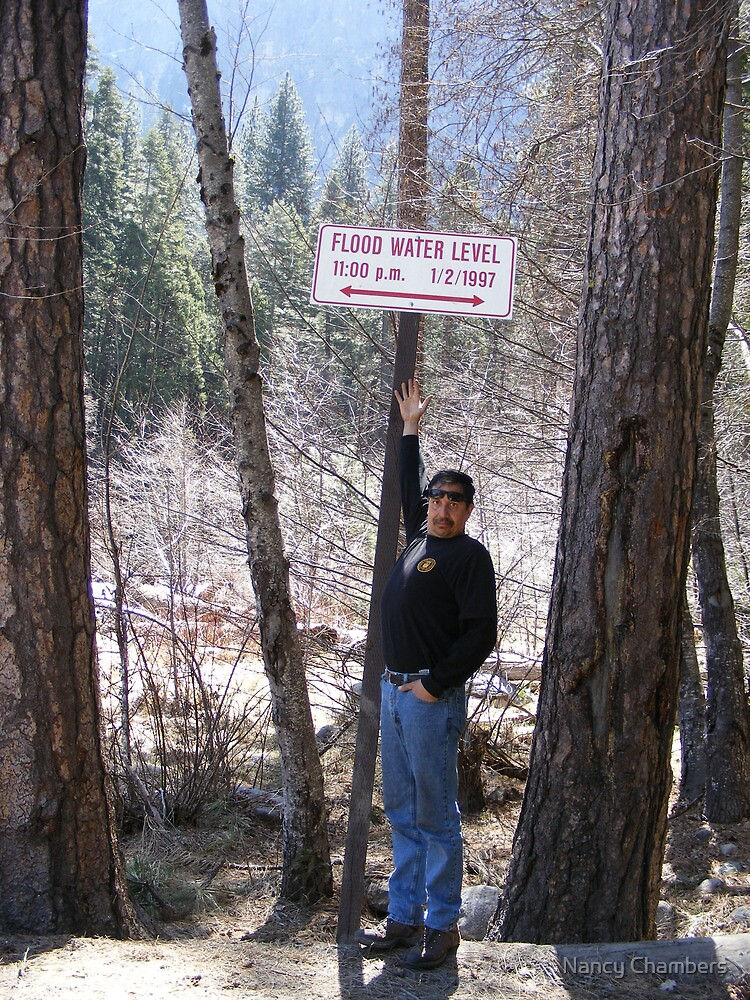 Yosemite's Flood Line by NancyC