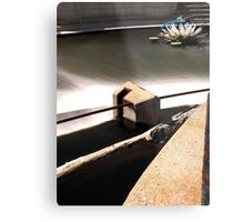 Above the Fox River Dam in Waukesha. Dragonfly in Background Metal Print