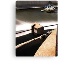 Above the Fox River Dam in Waukesha. Dragonfly in Background Canvas Print