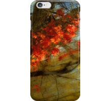 3927 iPhone Case/Skin