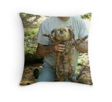 Now You've Gone and Done It! Throw Pillow
