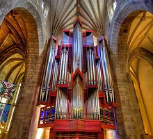 THE ORGAN by FLYINGSCOTSMAN