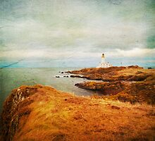 Turnberry Lighthouse by Liz Scott