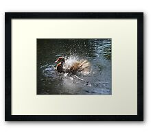 SPLISH, SPLASH, I WAS TAKIN' A BATH... Framed Print
