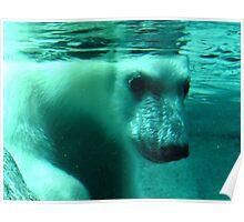 First Swim Poster