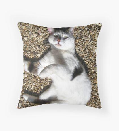 Scarey Cat Throw Pillow