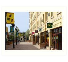 Downtown Waukesha Shops Art Print