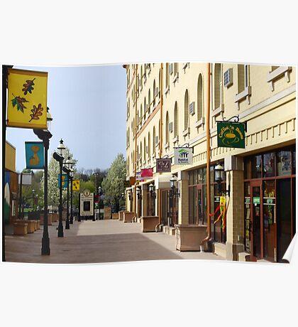 Downtown Waukesha Shops Poster