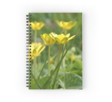 Buttercup - 2010 Spiral Notebook