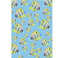 Angel Fish Pattern Photographic Print
