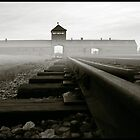 Auschwitz Birkenau - The Death Gate early morning by Peter Harpley