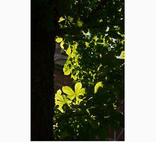 Spotlight on Spring Green Unisex T-Shirt