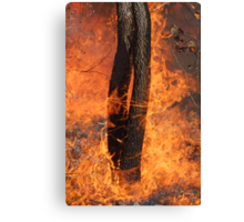 Fingers Of Fire Canvas Print
