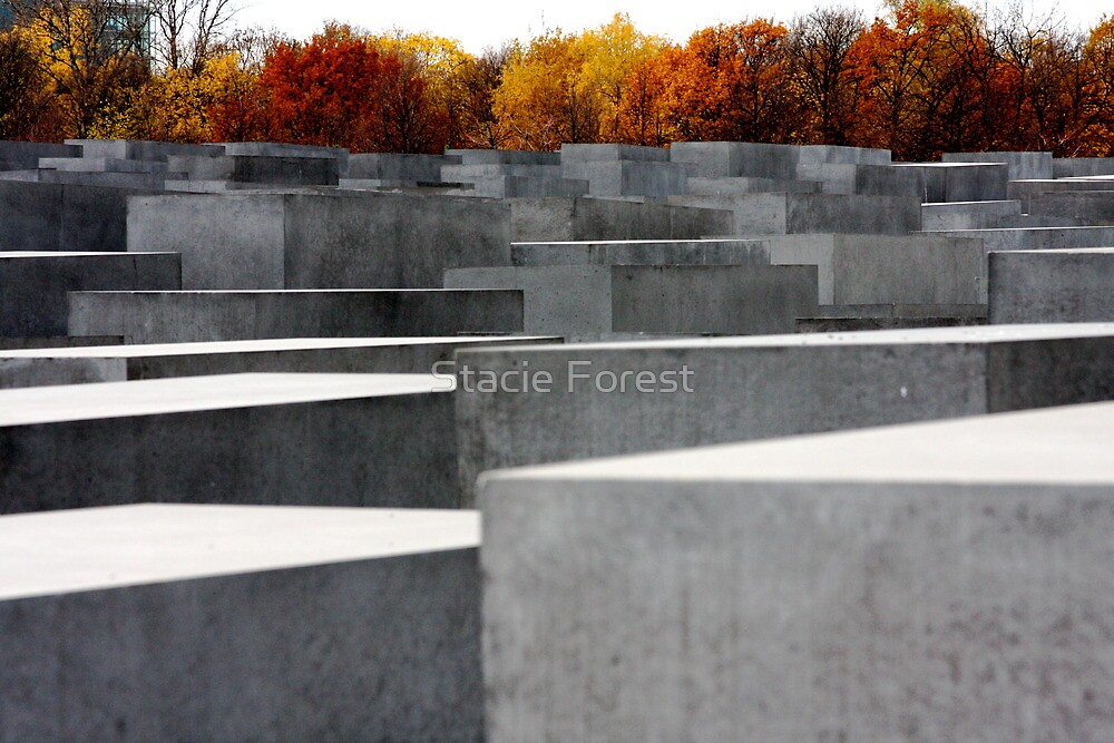 Somber Giants, Berlin Holocaust Memorial by Stacie Forest