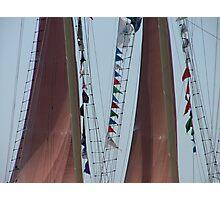 Double Sail Photographic Print