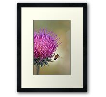 Buzzing Along --A Bee's Journey Framed Print