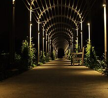 Garden Walkway by tvlgoddess