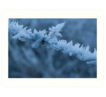 Hoar frost on barbed wire Art Print